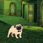 Dog Street Escape