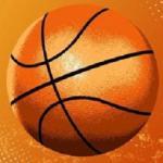 Treze Basket